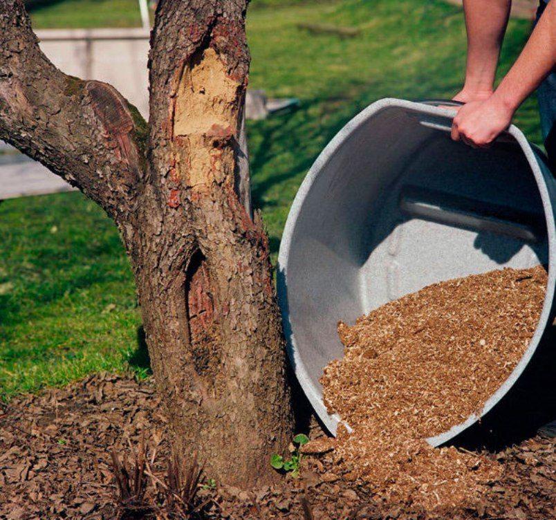 Использованный торф можно применять в качестве удобрения