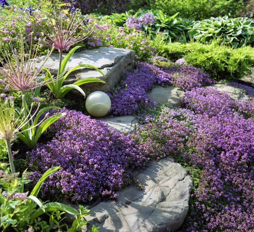 Альпинарий с яркими цветами
