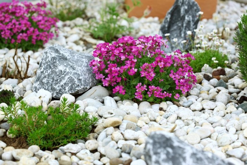 Альпийская горка с использованием мелких и крупных камней