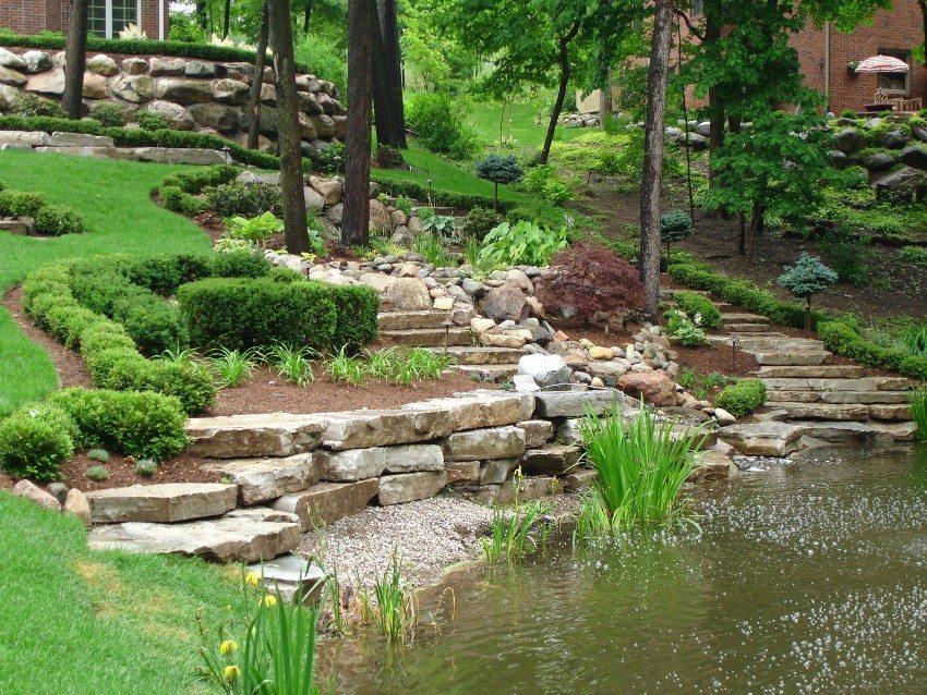 Для оформления водоема можно использовать камыш или тростник