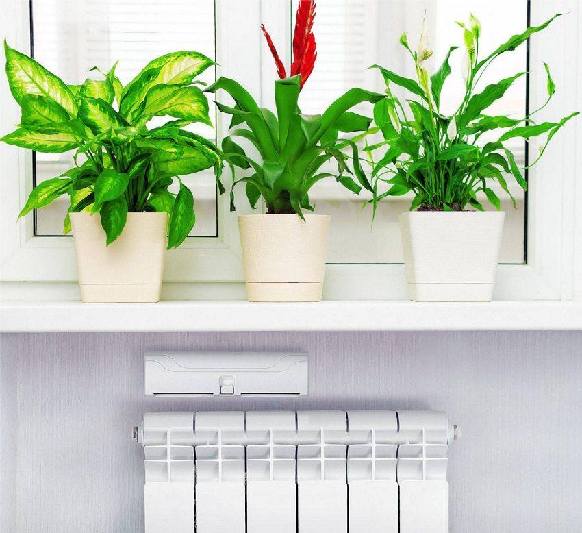 Воздух, поступающий из приточного клапана в холодное время года, будет нагреваться от тепла радиаторов отопления