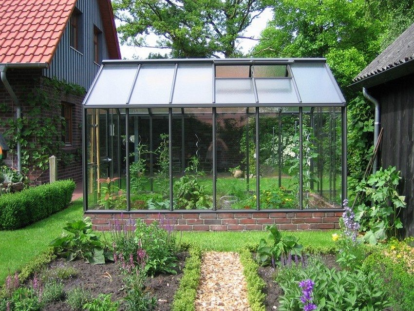 Теплица с двускатной крышей может использоваться для культивирования растений различной высоты