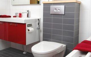 Гигиенический душ для унитаза со смесителем: достойная альтернатива биде