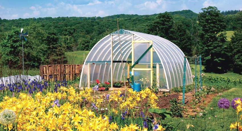 Теплицы из пластиковых труб становятся все более популярными среди огородников