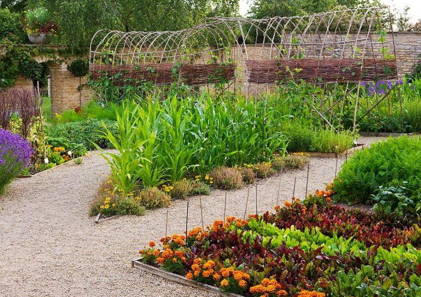 Вариант решения для тех, кто увлекается выращиванием овощей