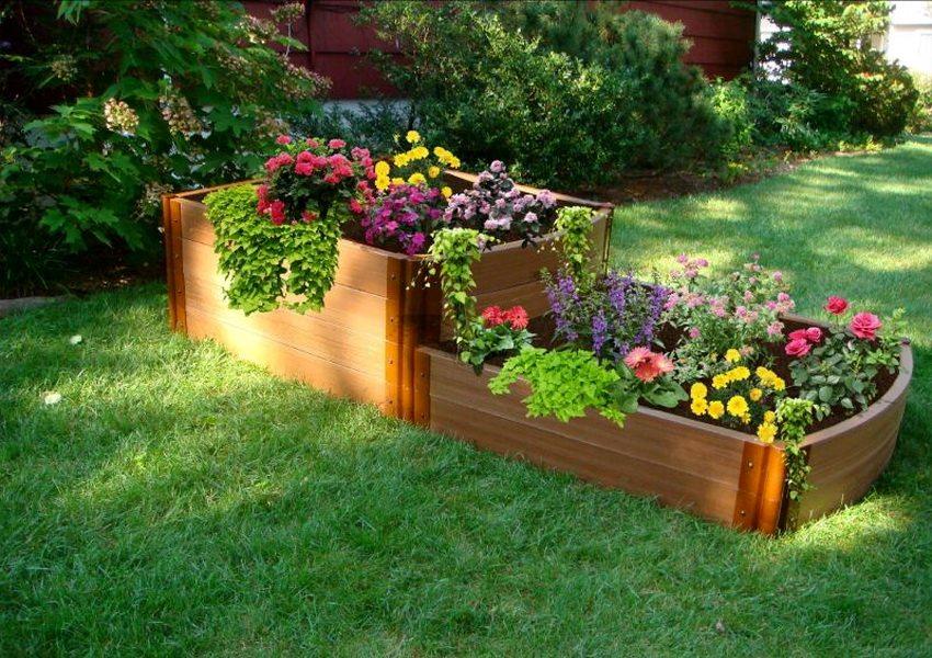 Выращивание цветов на клумбах различных форм и размеров