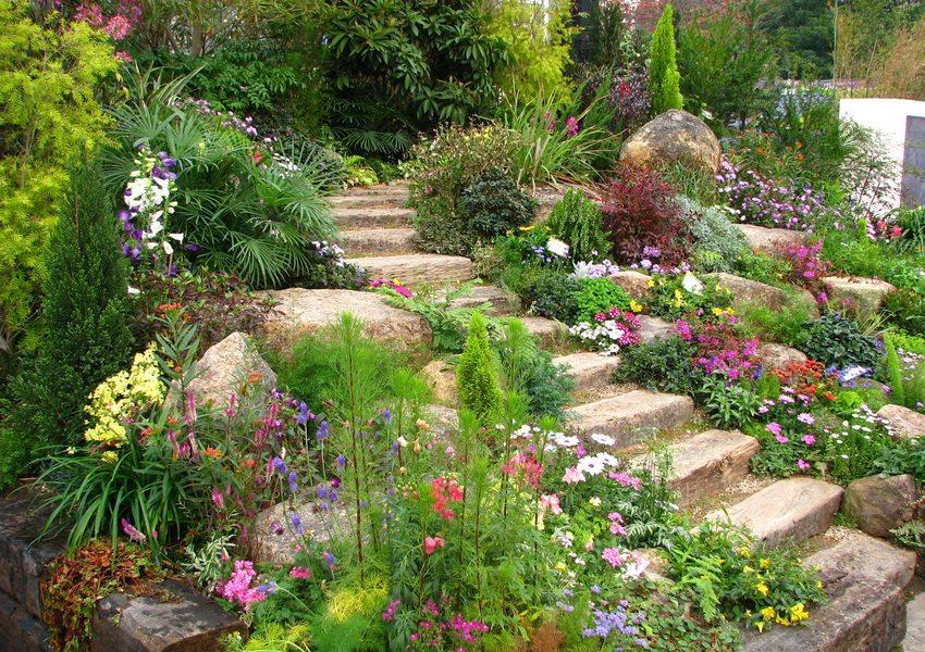 Вы можете создать в своем саду настоящий уголок первозданной природы