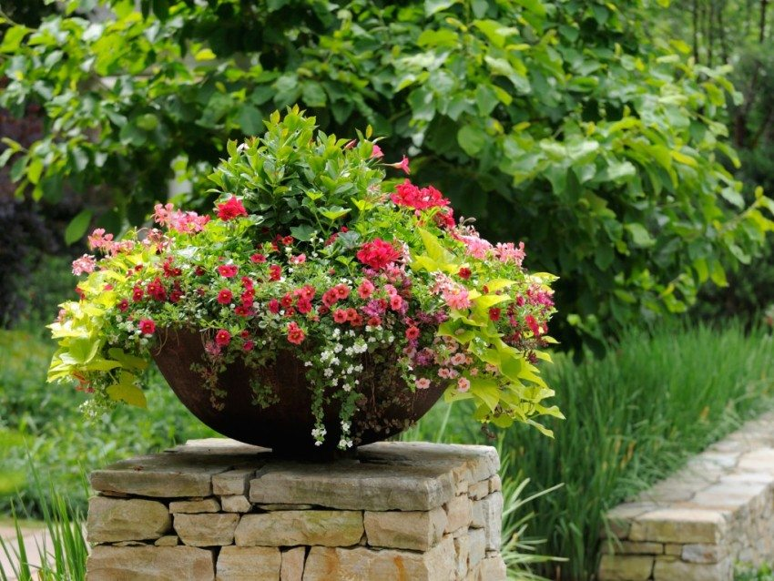 Каменный забор украшает вазон с садовыми цветами