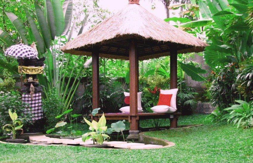 Ощущение экзотики помогут создать специфические растения и элементы декора