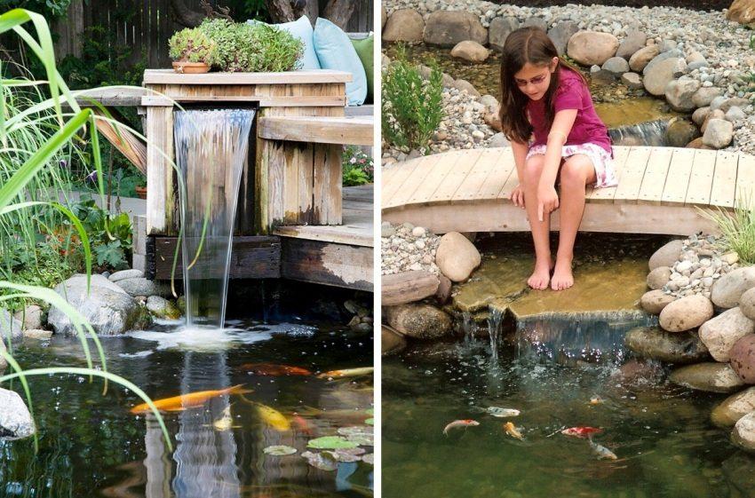 В водоеме на дачном участке можно разводить рыбу