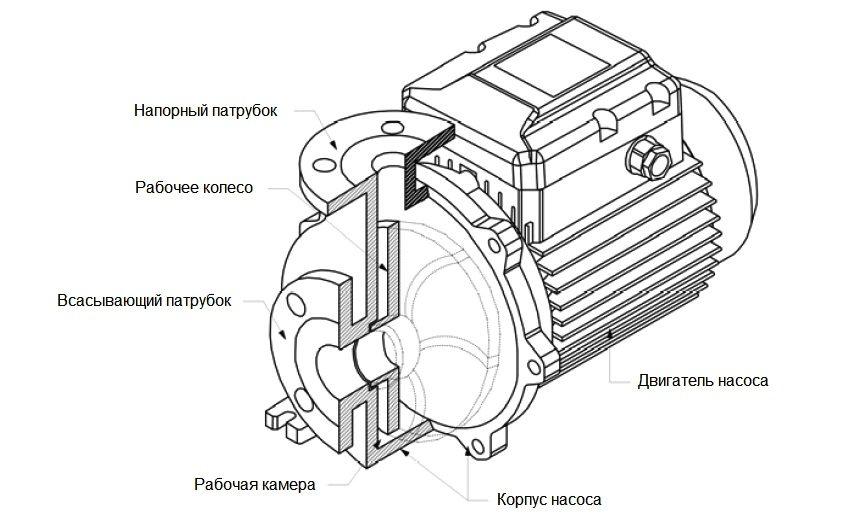 Строение и устройство циркуляционного насоса
