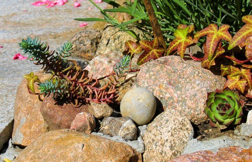 Декоративная привлекательность – важный критерий при выборе камней для рокария