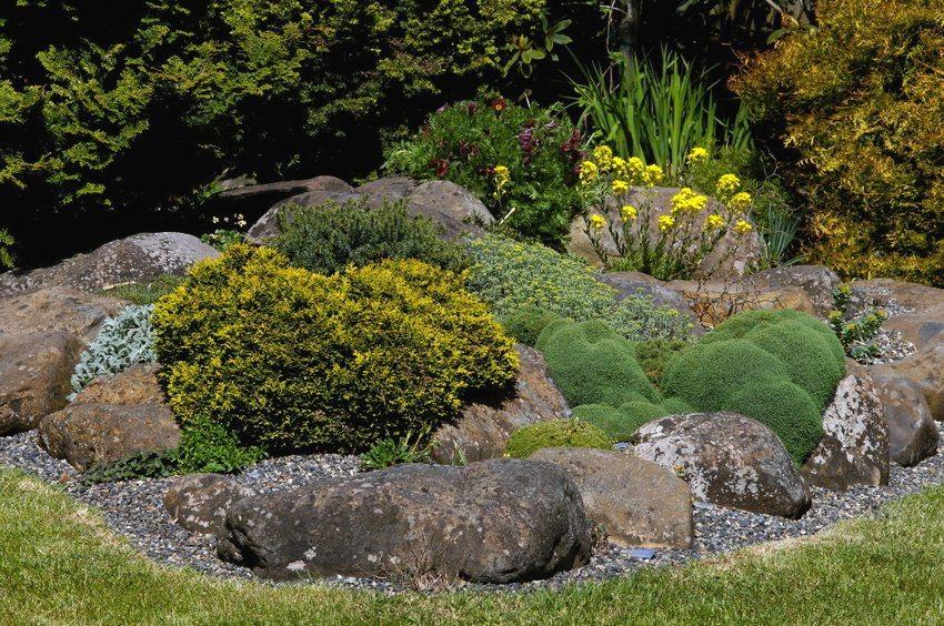 Рокарий, созданный своими руками, во дворе загородного дома