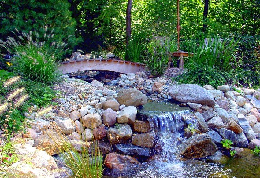 Оптимальный вариант для влаголюбивых растений – высаживание их рядом с источником воды