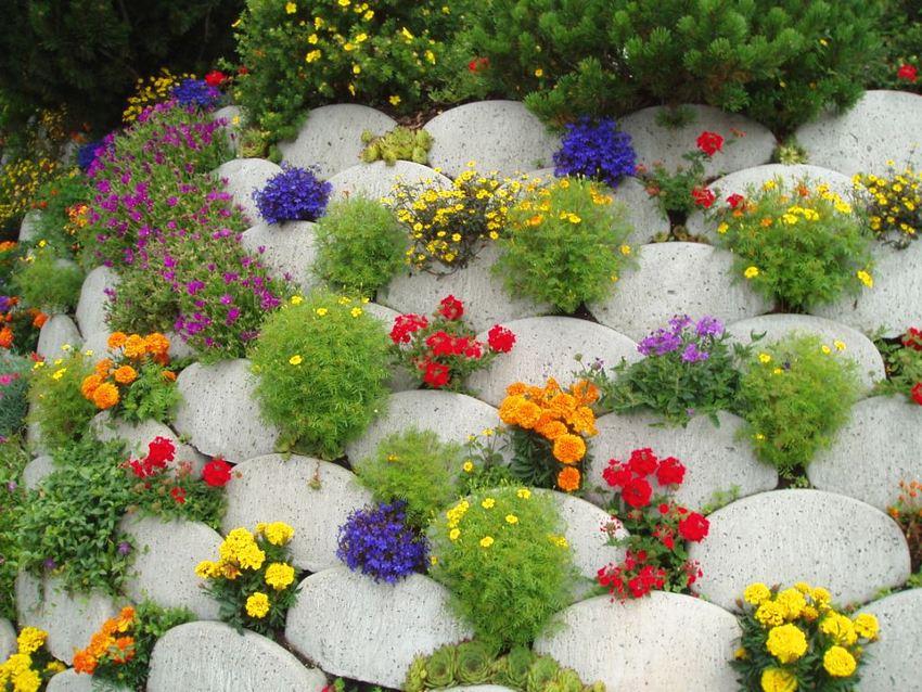 Альпийская каменная горка с яркими цветами