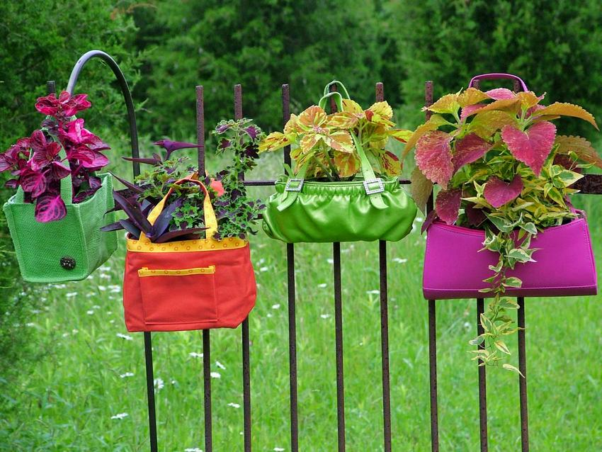 Мини-клумбы, устроенные в сумках ярких цветов