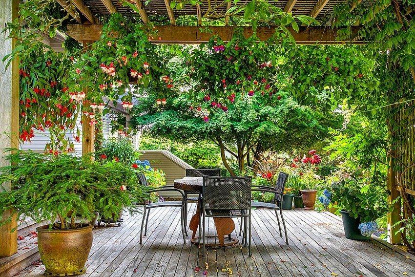 Пространство под деревянным навесом оформлено при помощи вертикальных клумб и различных вазонов с растениями