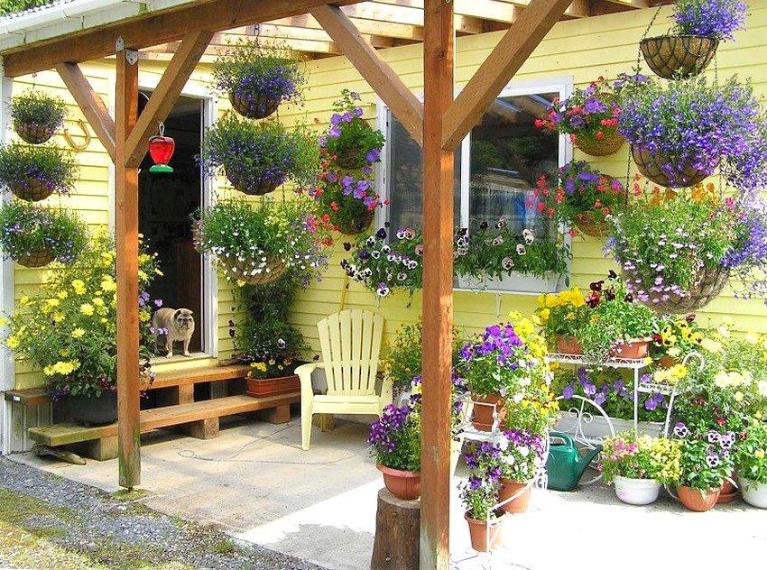 Мини-клумбы, устроенные в контейнерах, и вертикальные варианты цветников нуждаются в частом поливе и регулярном уходе