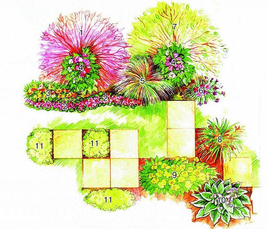 Схема цветника, в котором преобладают желто-красные оттенки: 1 - пузыреплодник калинолистный; 2 - агератум Хоустона; 3 - гацания гибридная; 4 - шток-роза; 5 - ячмень гривастый; 6 - василек синий; 7 - дерен белый; 8 - лилейник гибридный; 9 - энотера Друммонда; 10 - хоста Форчуна; 11 - седум едкий