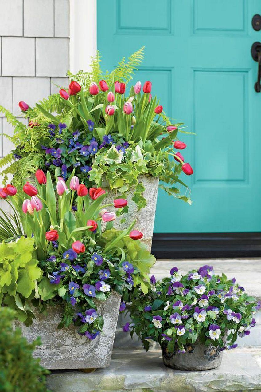 Цветник перед входом в дом, устроенный в бетонных вазонах разного размера