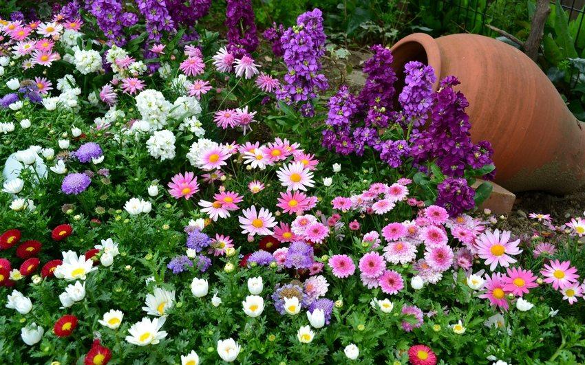 Глиняные кувшины могут стать основой необычной цветочной композиции