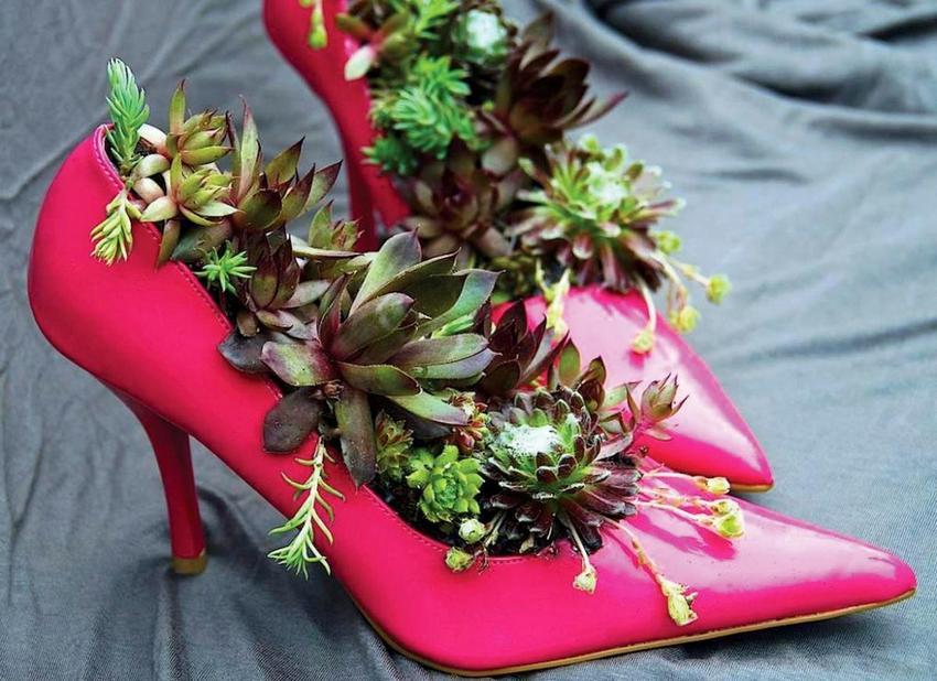 Интересно и необычно выглядят мини-цветники, устроенные в обуви