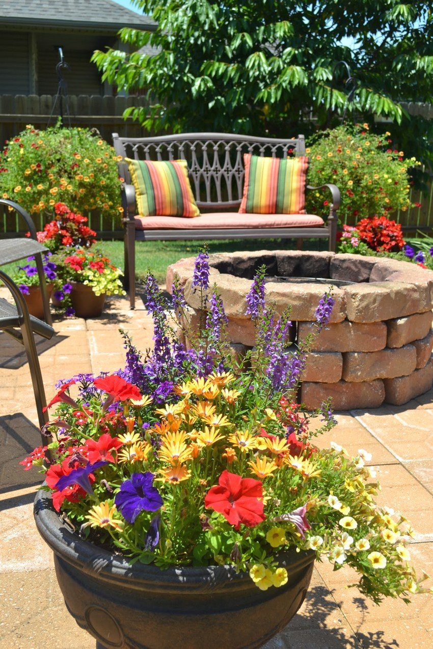 Подборка бордюрных цветов для обрамления клумб и садовых дорожек