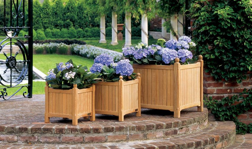 Цветы, растущие в деревянных ящиках, – мобильный и привлекательный на вид вариант клумбы
