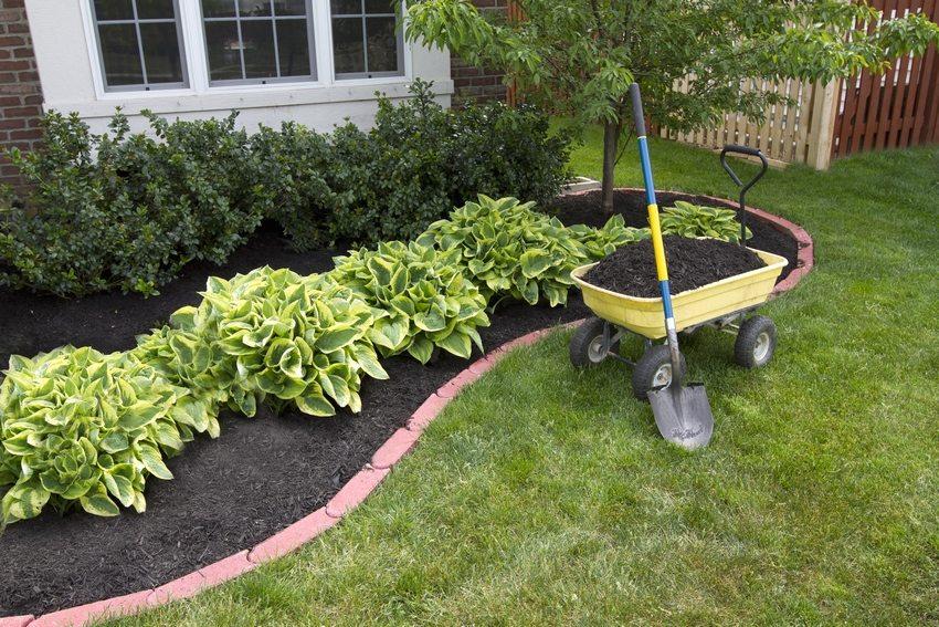 Важный этап устройства клумбы – подготовка почвы для посадки растений