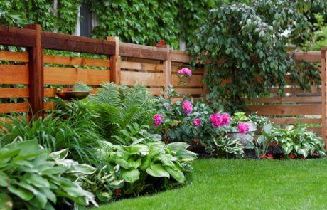 Красивые заборы для частных домов: фото интересных изгородей
