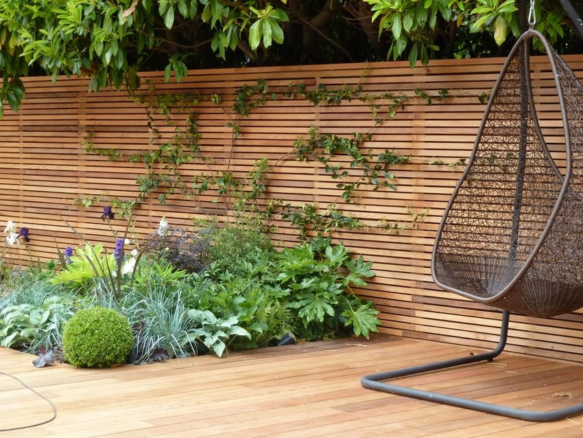 Стильный деревянный забор украшают вьющиеся растения