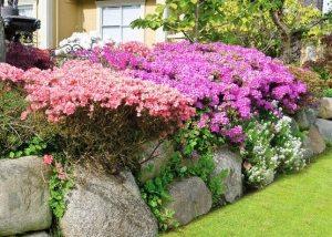 Фото клумб из камней с цветами на даче своими руками