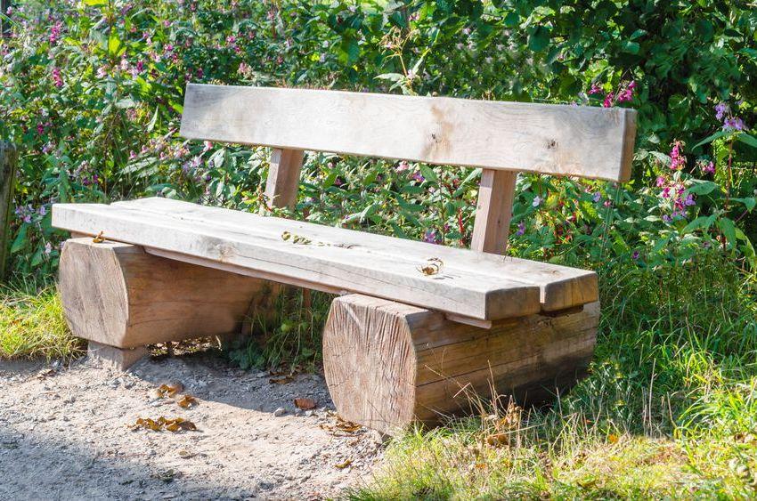 Скамья из бревна может стать необычным украшением придомовой территории