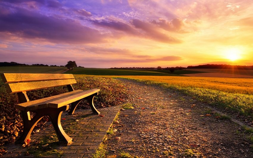 Скамейки из дерева отличаются красотой и высокой экологичностью