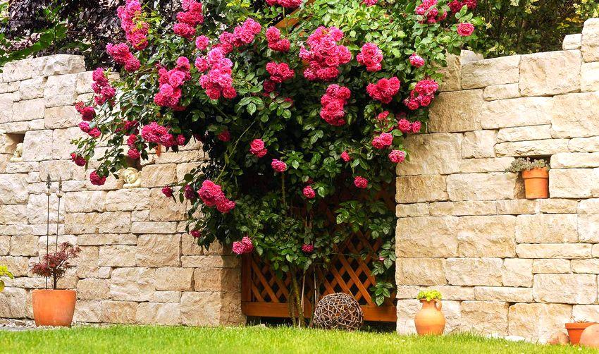 Забор из камня выглядит роскошно и основательно