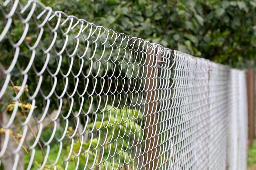 Металлическую сетку чаще всего используют для разделения между соседними участками