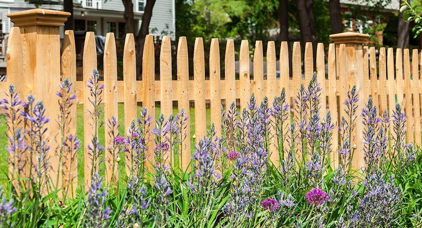 Красивый забор придает участку аккуратный и ухоженный вид