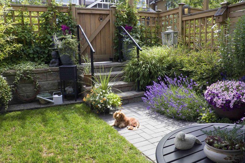 Забор решетка отлично гармонирует с растительностью во дворе