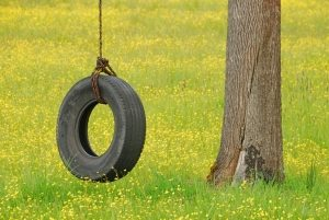 Качели из цельной покрышки, подвешенные к ветке дерева