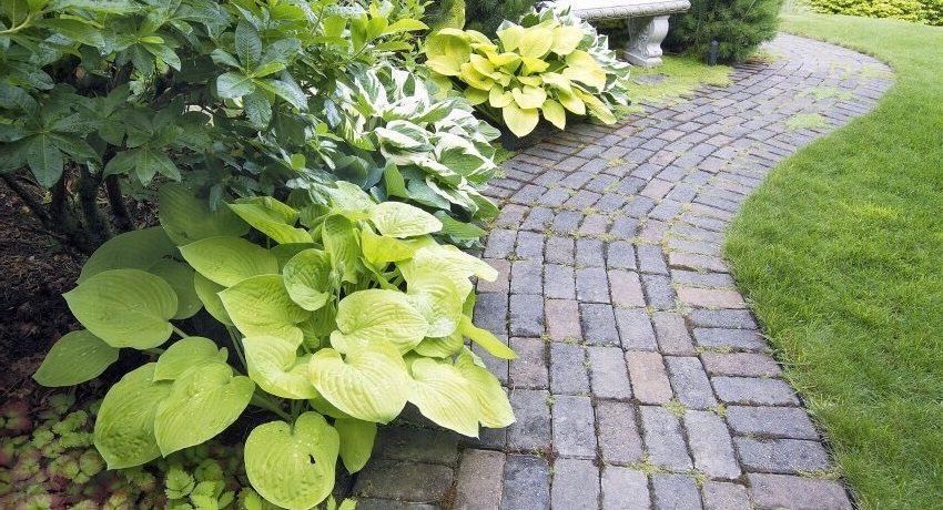 Садовая дорожка из тротуарной плитки простой кладки