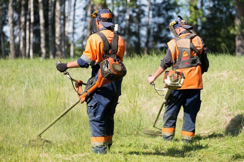 Для работы на обширных территориях нужно выбирать бензиновые триммеры профессионального типа