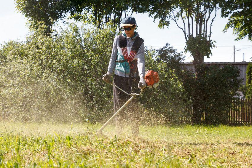 Процесс скашивания травы с помощью мощного бензинового триммера