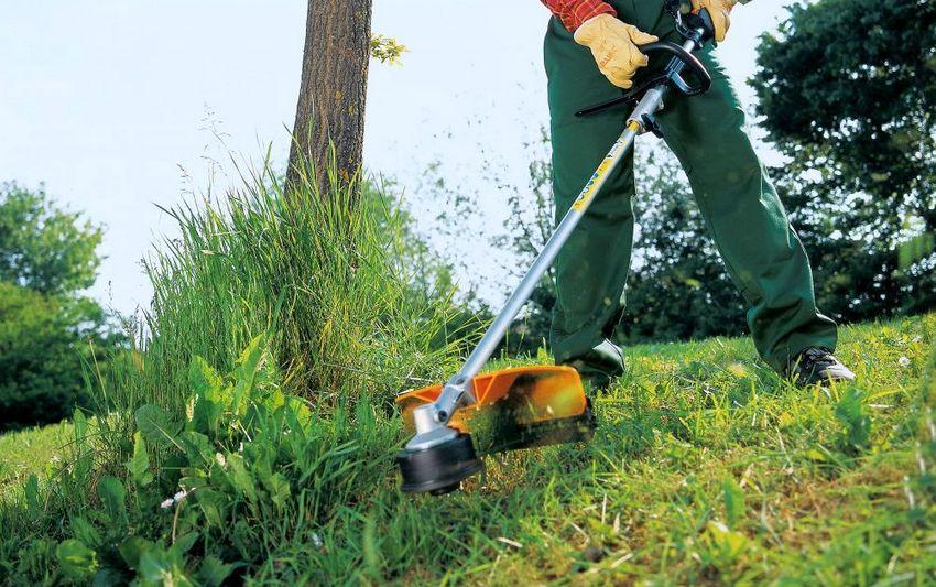 Разумный подход к выбору бензинового триммера сделает процесс скашивания травы легким и удобным