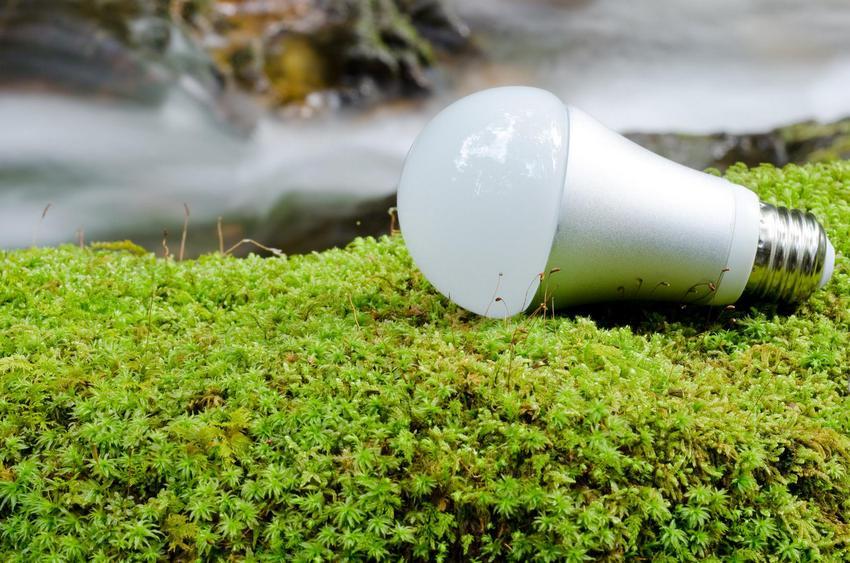 Высокая экологичность - одно из главных достоинств led-ламп