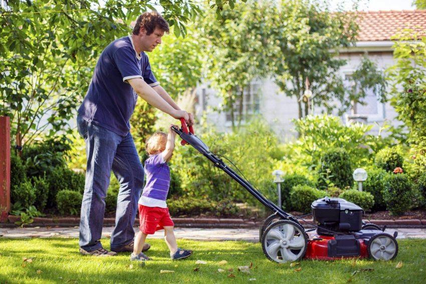 Комфорт использования газонокосилки зависит от ряда особенностей ее комплектации