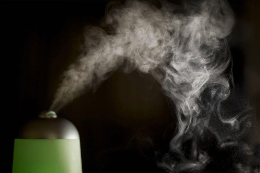 Низкая влажность негативно влияет на комнатные растения и деревянные предметы интерьера