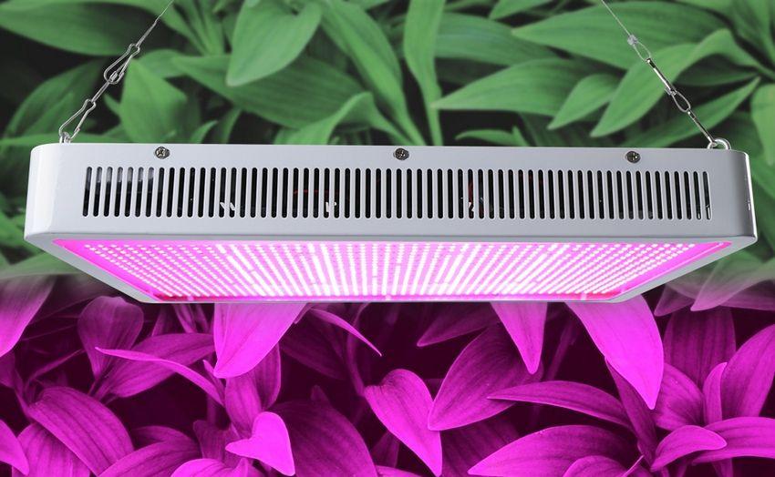 Для растений применяются специальные лампы с длиной волны излучения в пределах 315-380 нм