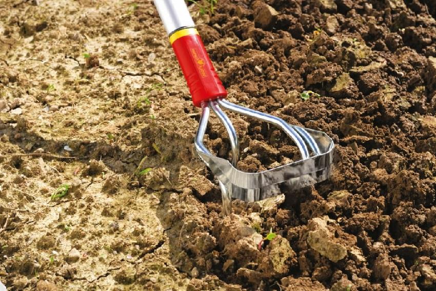 Культивирование почвы при помощи ручного культиватора