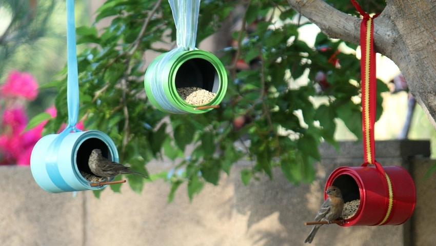 Кормушки для птиц, сделанные своими руками
