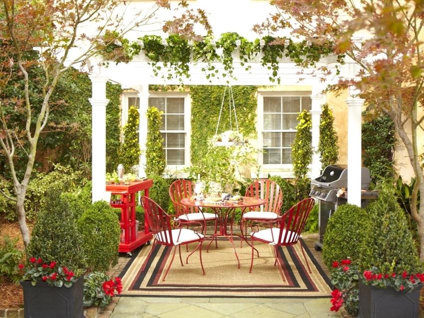 Вьющиеся растения станут замечательным украшением садовой беседки